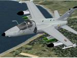 FS                   2002 Aeritalia Aermacchi Embraer AMX textures only