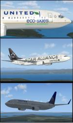 FSX United Boeing 737-800 Textures Set