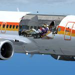 PMDG Boeing 737-600 Aloha Flight 243 Textures