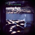 Palwaukee Evening Flight