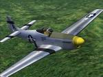 CFS2             FDG P-51D Mustang Jane's WWII Fighters texture Update