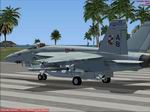 FSX                     F/A-18E Super Hornet VFA-211 Checkmates Textures Only