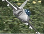 SAAB                     GRIPEN Two-seat for FS2000 Pro only