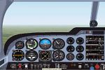 Piper