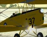 Spike's Tiger Moth with Engine Fire Effects
