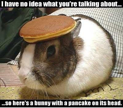 1205927630_192_FT9282_pancake-bunny%5B1%